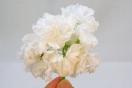 ЕК-Зимняя Феерия-цветонос
